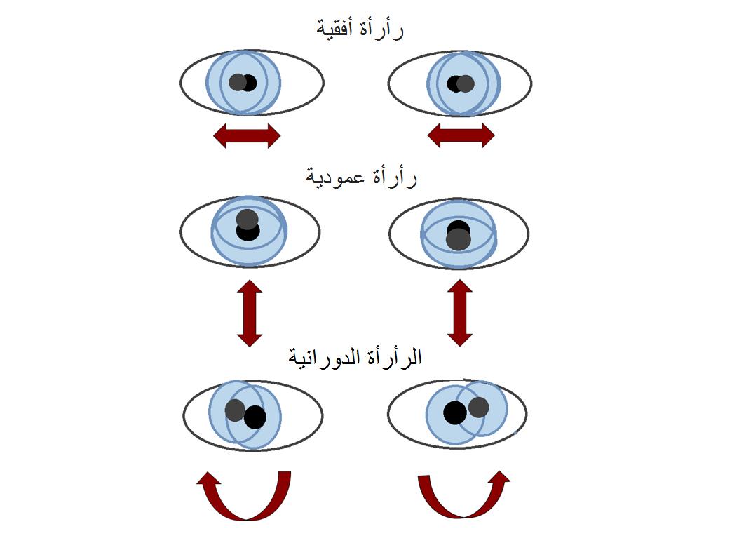 راراة العين