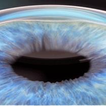تليف ونزيف شبكية العين